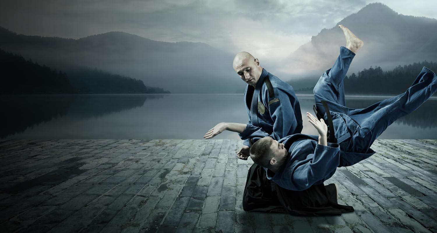 Fraud Mitigation Metaphor: An Aikido practitioner effortlessly throws an attacker to the ground - Stop fraud in its tracks